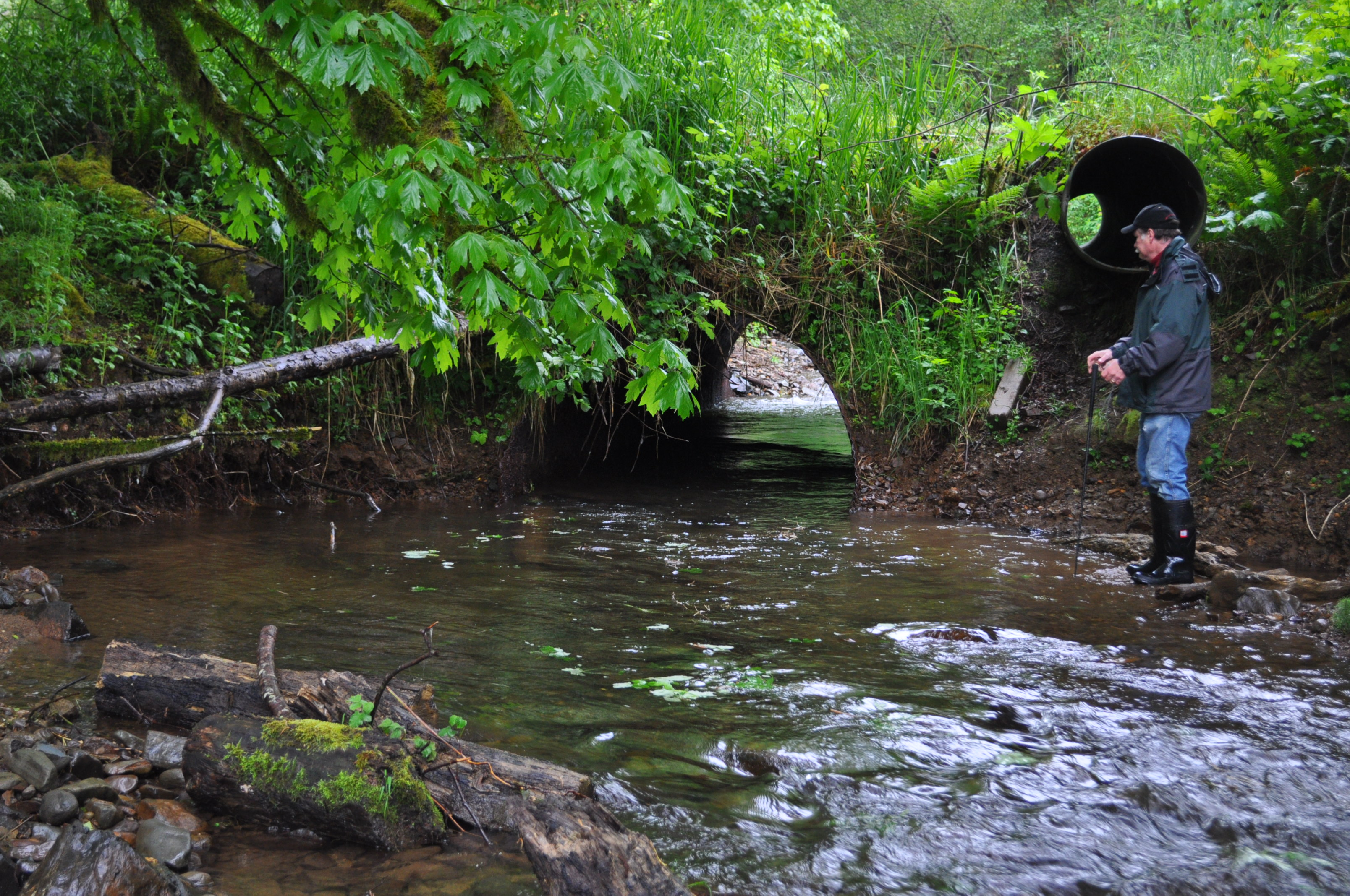 Before looking Upstream